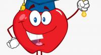 BELL SCHEDULE 2020-2021 Please click the link below to see our bell schedule! Glenwood – School Schedule 2020-2021